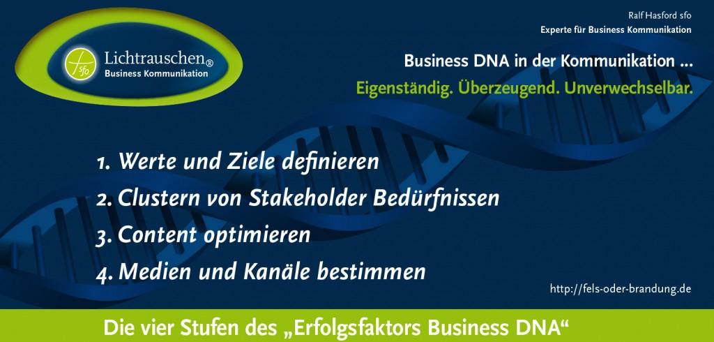 Lichtrauschen: Erfolgsfaktor Business DNA … erfolgreiche Business Kommunikation