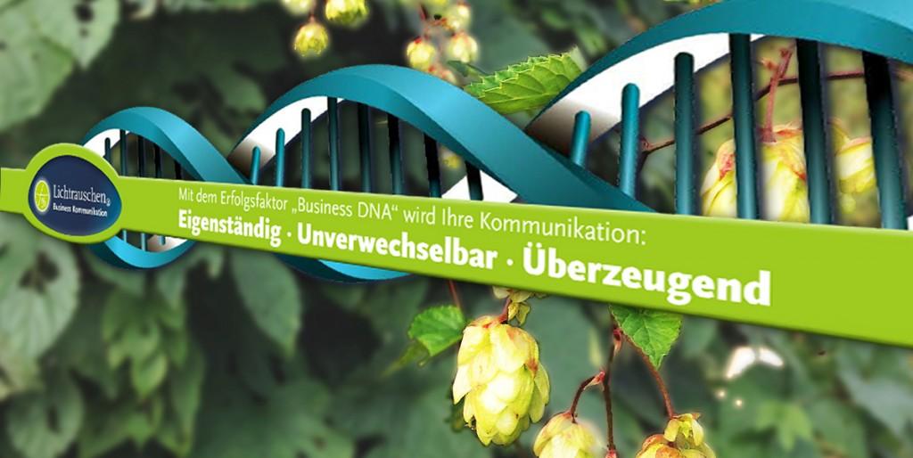 Lichtrauschen Unternehmens-Kommunikation mit Business DNA