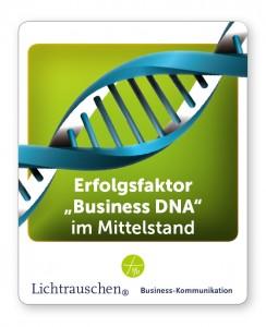 Lichtrauschen setzt auf den Erfolgsfaktor Business DNA für den Mitteldtand